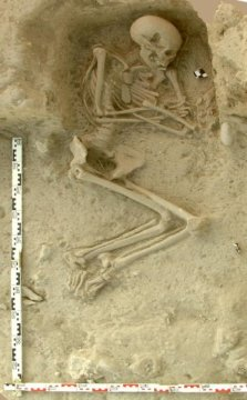 Human skeleton from an archaeological excavation in northern Greece, from where one neolithic genome originates.