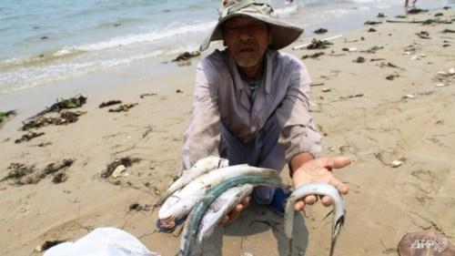 Vietnam fishing