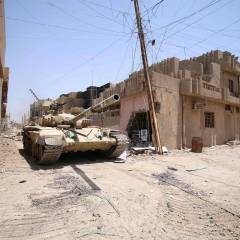 Iraq says IS ripped apart by air strikes as it fled Fallujah