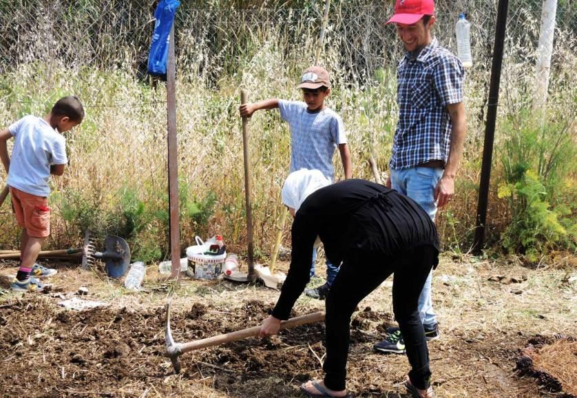 Беженцы сажают огород на острове Лесбос