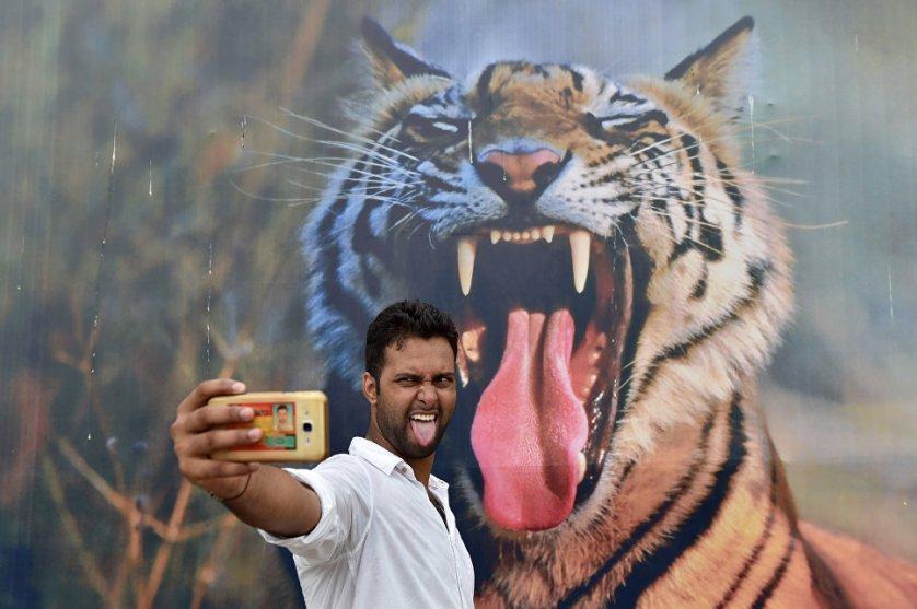 Гость фестиваля Бхарат Parav в Нью-Дели, проходившего в рамках празднования Дня независимости Индии, делает селфи. Фоном он выбрал плакат с тигром.
