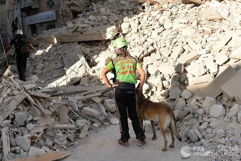 В Аматриче продолжается разбор завалов. Искать людей в разрушенных домах помогают служебные собаки.