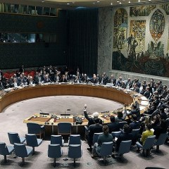 Russia stands against review of veto in UN Security Council