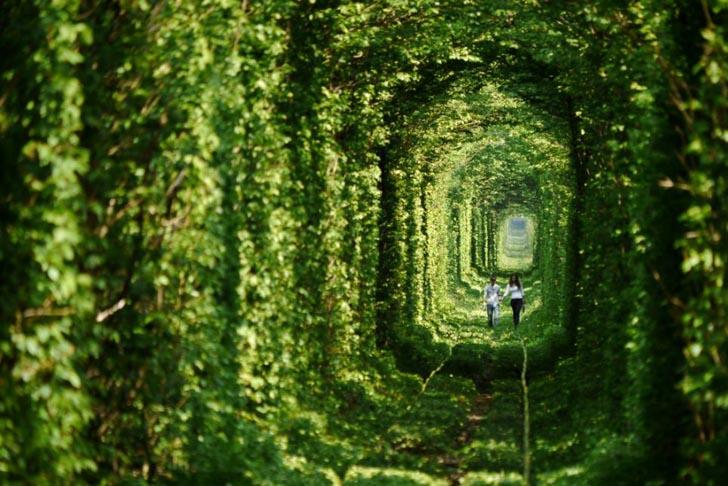 leafy-tunnel-of-love-in-ukraine-2