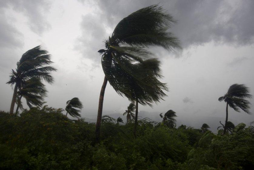 Скорость ветра в зоне действия урагана достигает 215 километров в час. Шторм становится ураганом, когда скорость ветра превышает 119 километров в час.