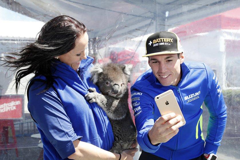 Испанский мотогонщик Алеш Эспаргаро делает селфи с коалой в Мельбурне, Австралия.