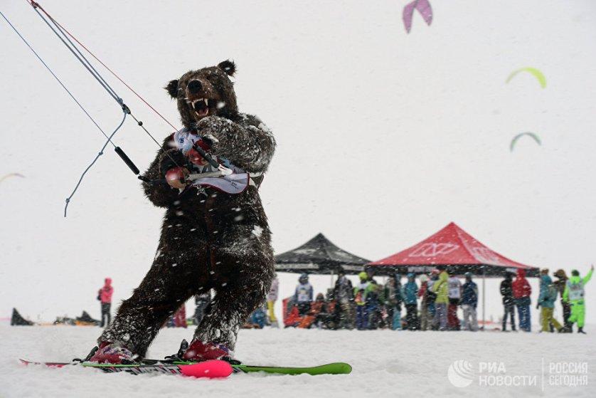 Спортсмен в костюме медведя во время гонок в дисциплине фристайл в рамках кубка Сибири по зимнему кайтингу на льду водохранилища Новосибирской ГЭС.