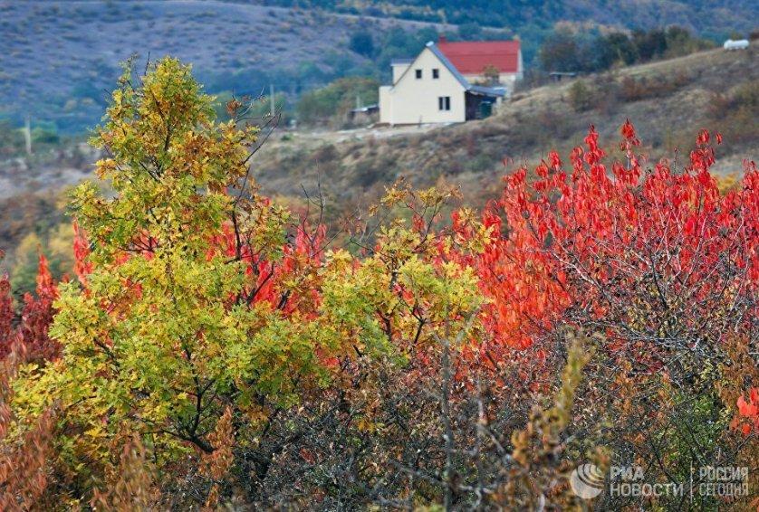 В окрестностях села Клиновка Симферопольского района.