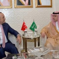 ССАГПЗ и Турция призвали СБ ООН к незамедлительным действиям в Сирии