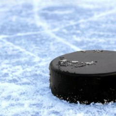 Учёные рассказали, как просмотр хоккея влияет на сердце
