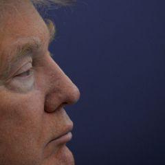 Трамп или 100 дней, которые НЕ потрясли мир