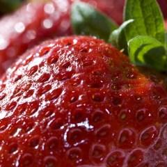Ученые назвали самую опасную ягоду