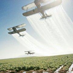 Ученые выяснили, как пестициды и пищевые добавки влияют на человека