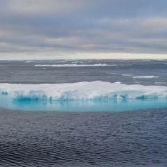 Лидеры Канады и Японии договорились сотрудничать с США по проблемам климата