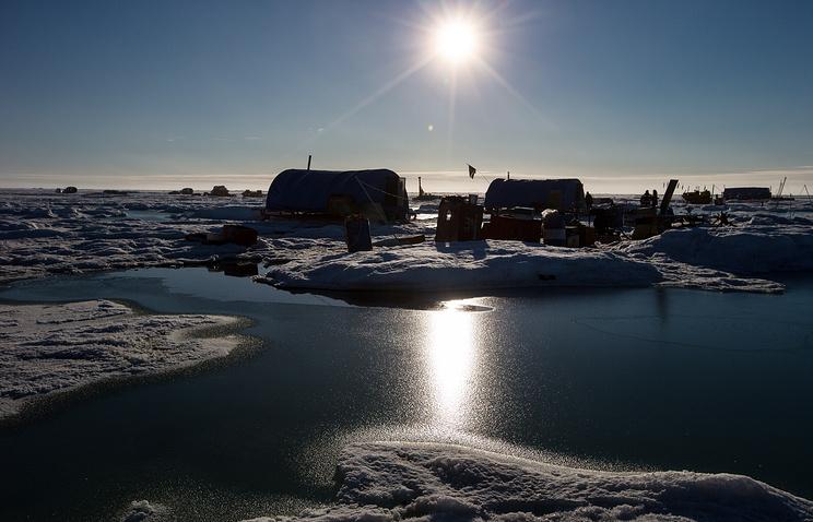 Ученые выяснили, как обитатели Арктики приспосабливаются к потеплению