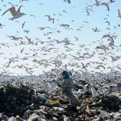 Сергей Иванов подсчитал объем скопившегося в России мусора