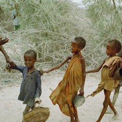 В Сомали число голодающих детей увеличится до 1,4 млн человек