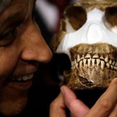 Ученые: предки людей могли появиться на Балканах, а не в Африке
