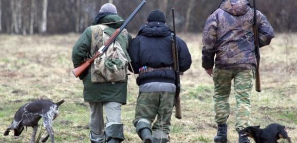 На лося — после экзамена: что может измениться в законе «Об охоте»