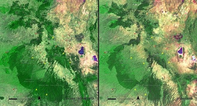 Сильно пострадал от рук лесорубов лес Мау в Кении. Разница заметна на снимках, сделанных в 1973 году и в декабре 2009 года. © NASA