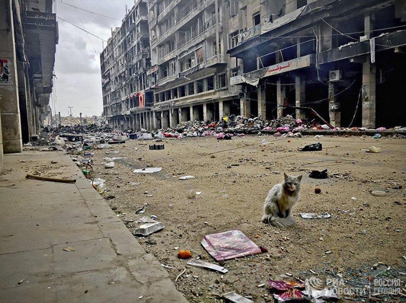 На одной из улиц Старого города в историческом центре Алеппо. Сирия, 15.02.2016.
