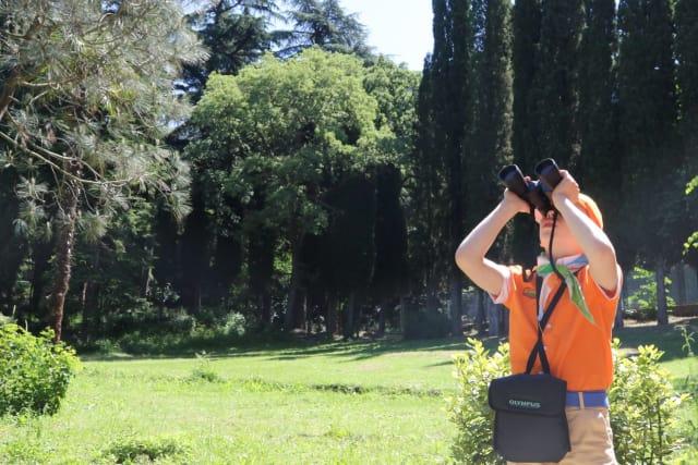 Самое сложное в занятиях юных орнитологов — разглядеть птиц в ветвях деревьев