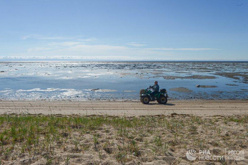 Лаборатория пресноводных и морских экосистем Института экологических проблем Севера изучает озера и реки, а также часть Белого моря: Двинской и Онежский заливы.