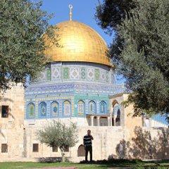 Израиль в ситуации на Храмовой горе «прощупывал почву», считает эксперт