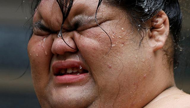 Двадцать тысяч килокалорий в день: как живут профессиональные сумоисты