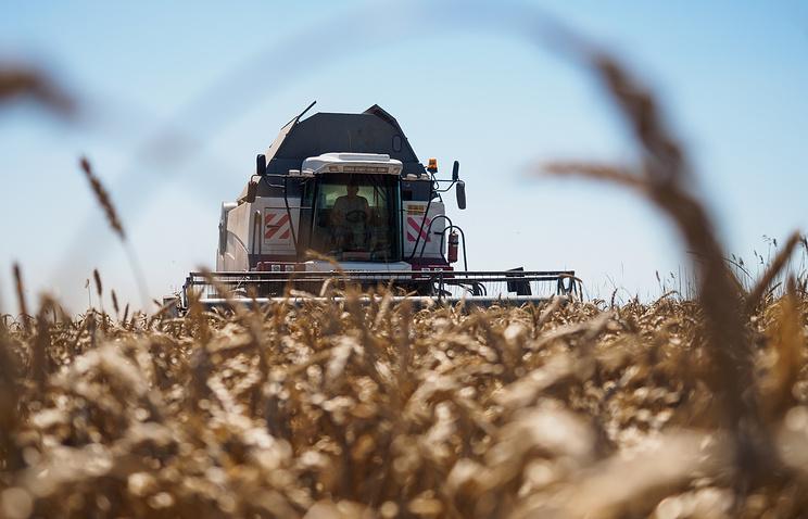 Ткачев считает, что Россия может вернуть лидерство по экспорту пшеницы в этом сельхозгоду