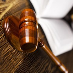 Суд вынес приговор «хабаровским живодеркам»