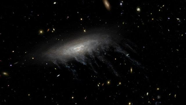 Астрономы получили фото черных дыр, поедающих космических «медуз»