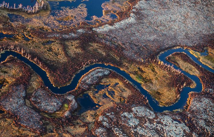 Ямальские ученые планируют сотрудничать с исследователями Университета Арктики