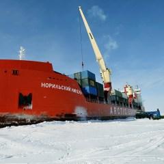 Первый транспорт с рыбой пришел в Архангельск из Владивостока по Севморпути