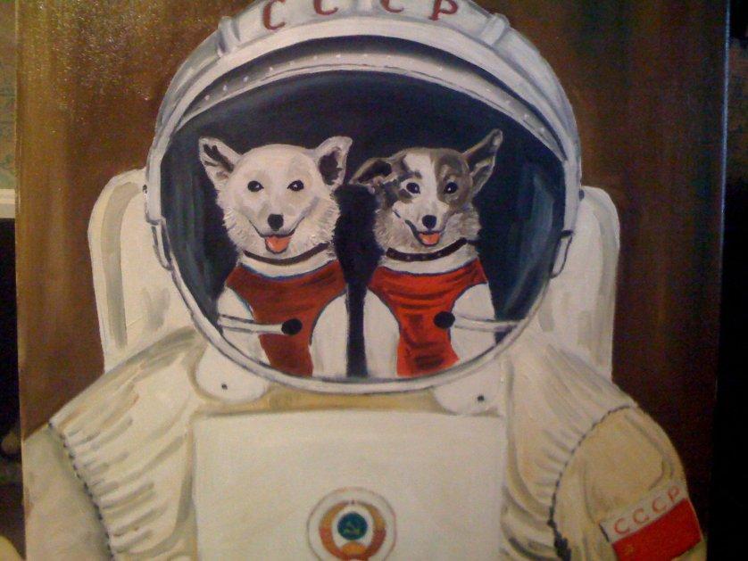 Этот день в истории: 19 августа 1960 года  — Полет в космос собак Белки и Стрелки