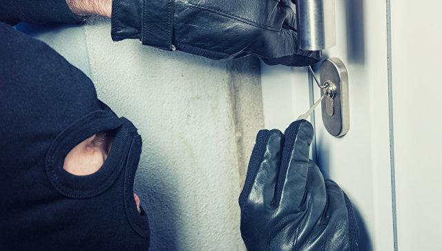 В Новой Москве 10-летний мальчик помог поймать вооруженных домушников