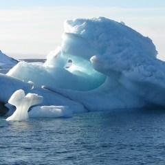 Генпрокуратура обяжет сбрасывающих отходы в Арктике восстанавливать популяции рыб