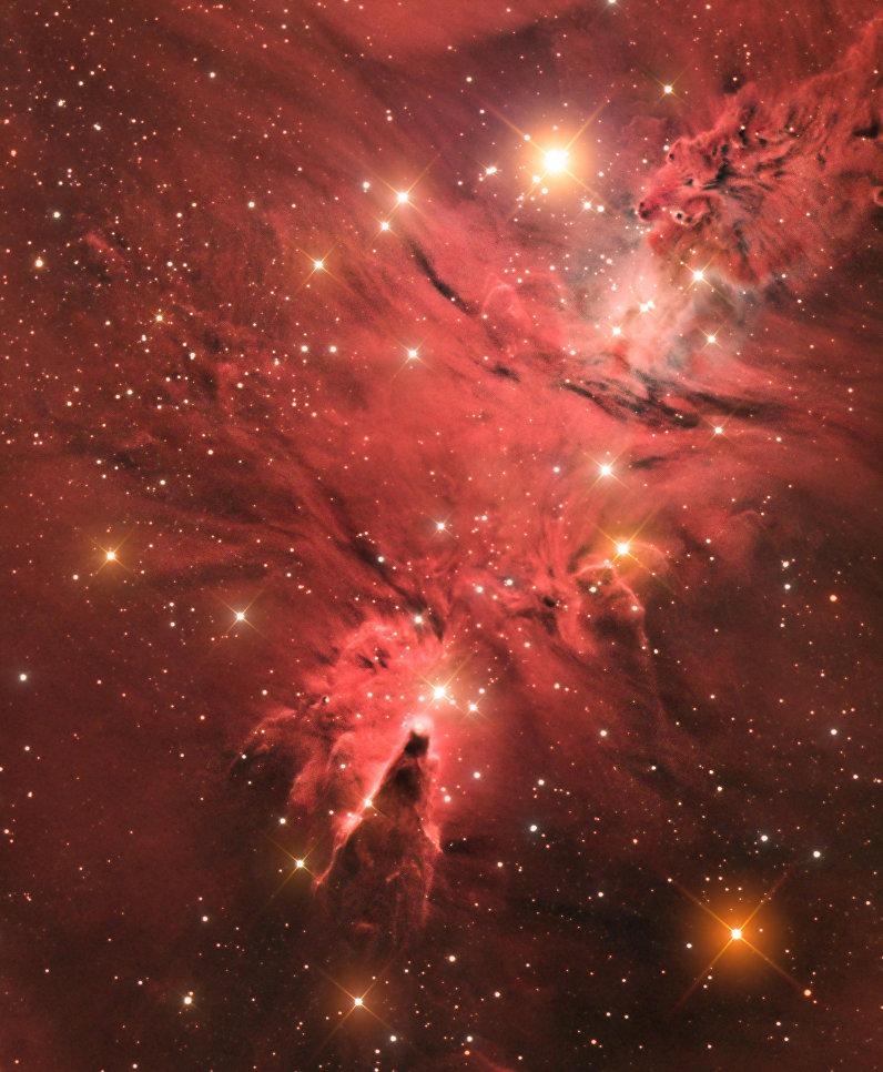 """Снимок фотографа Джейсона Грина из Гибралтара """"Звездное скопление Снежинки (The Cone Nebula (NGC 2264), получивший специальный приз за лучший дебют в фотоконкурсе."""