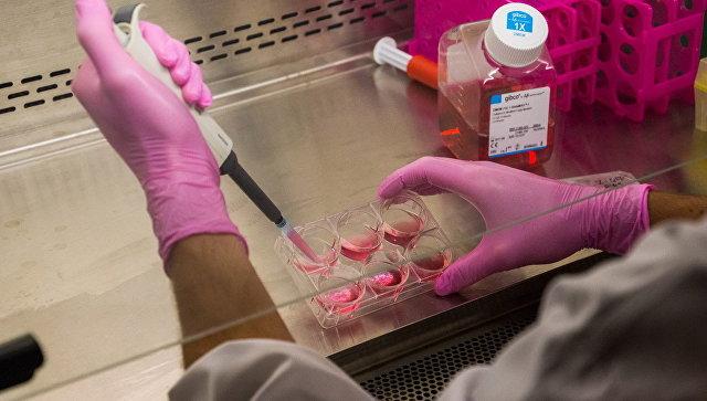 Российские ученые выяснили, что может остановить рост самого опасного рака