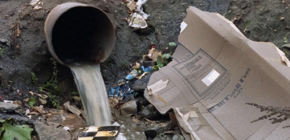 Эксперты в Красноярске обсудили защиту природы от бытовых отходов