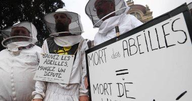 نشطاء ومربون يقيمون جنازة رمزية للنحل احتجاجا على استخدام المبيدات