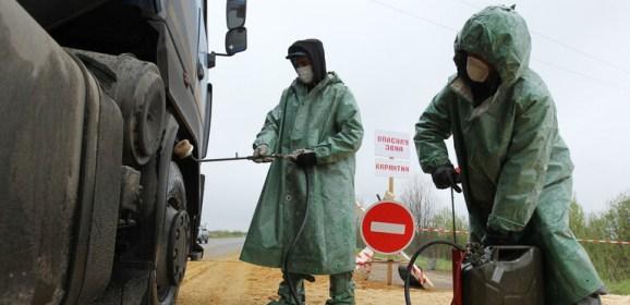 فرض الحجر الصحي بسبب طاعون الخنازير في الشرق الأقصى الروسي