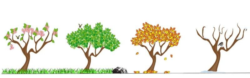I mesi in russo e le stagioni