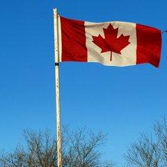 Половина жителей Канады выступают за депортацию нелегалов из США