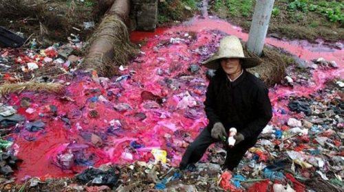 Обратная Сторона Ярлыка «Сделано В Китае»