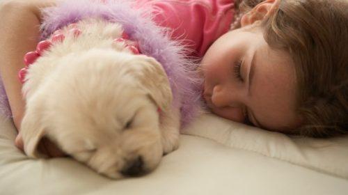 Почему вредно спать более 8 часов