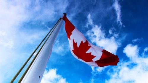 В Канаде с начала года задержаны более 11 тысяч нелегалов из США