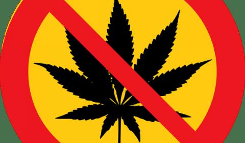 Полиция Канады выступила против легализации марихуаны