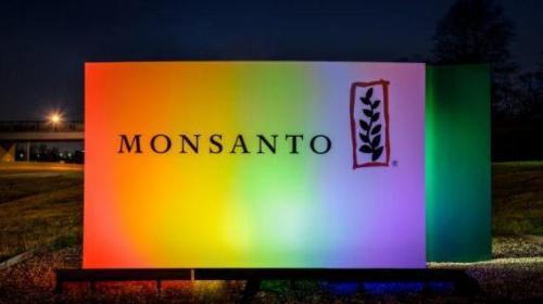 Константин Никифоров. Monsanto в Европе