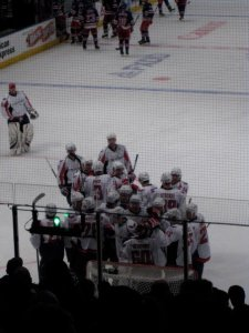 Emily's View from her Madison Square Garden Seats where the Caps celebrate 12th Straight Victory